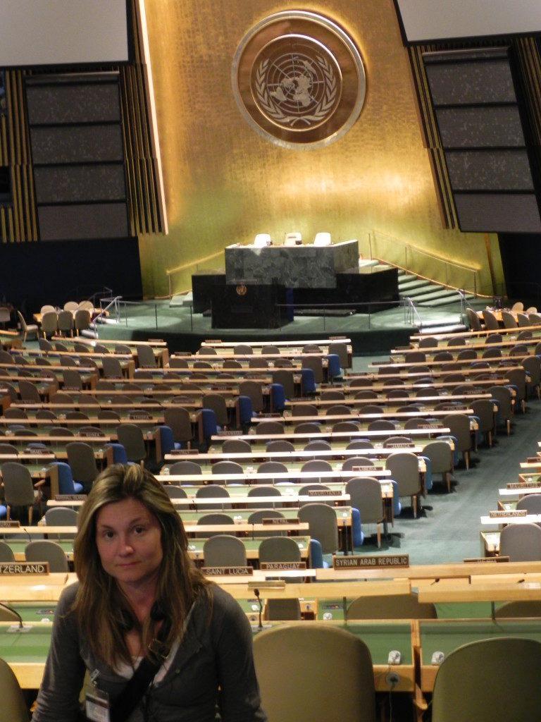 Nella sala dell' Assemblea Generale