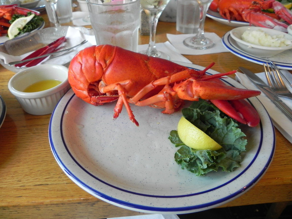 A typical lunch at Kennebunkport, Maine, USA
