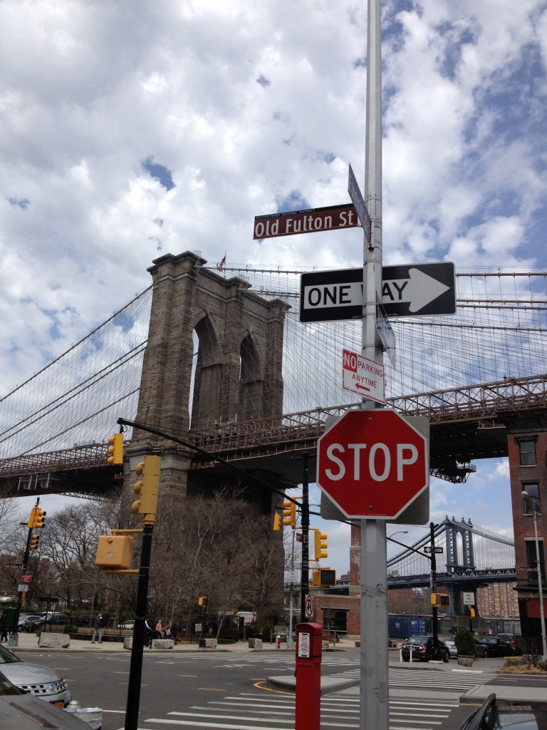 Enjoy Brooklyn Bridge