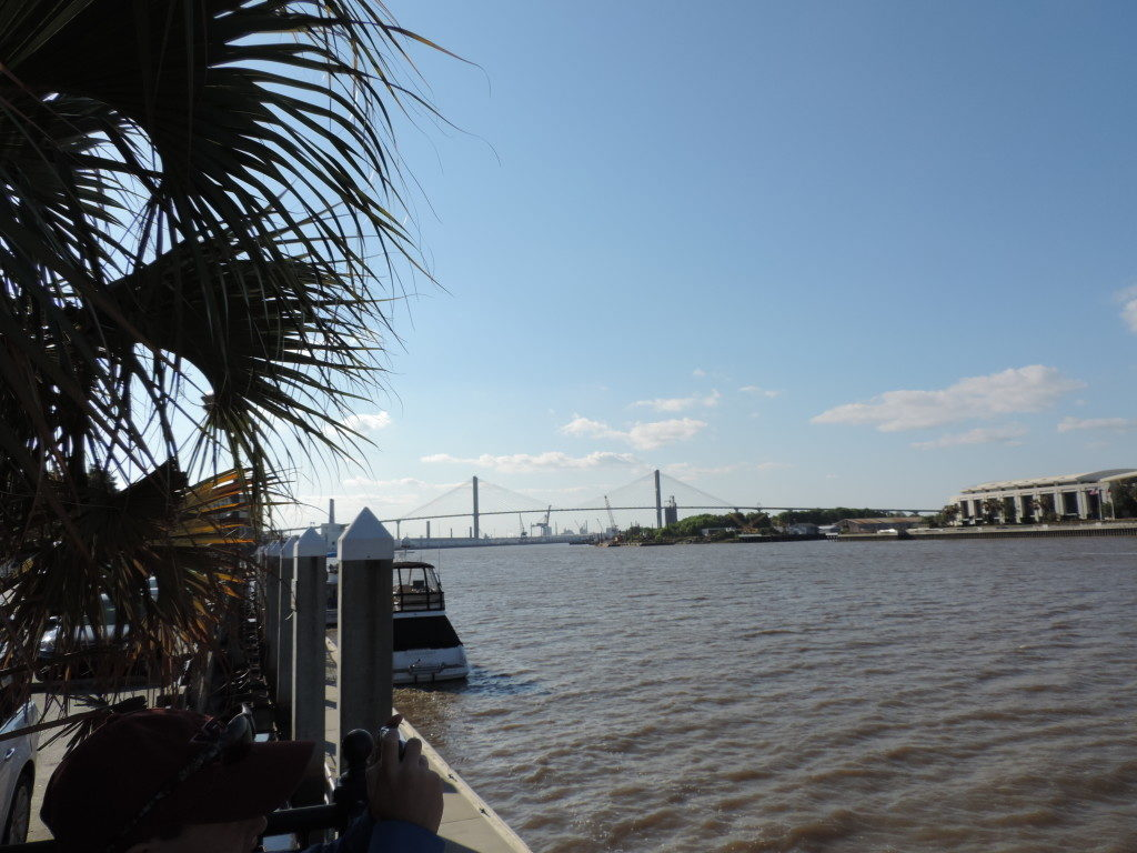 On the Savannah River