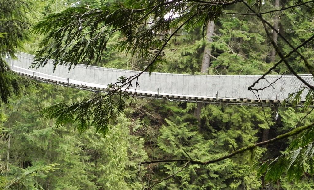 Il Capilano Suspension Bridge