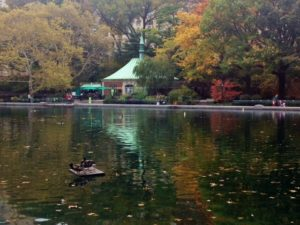 Conservatory Water, Central Park