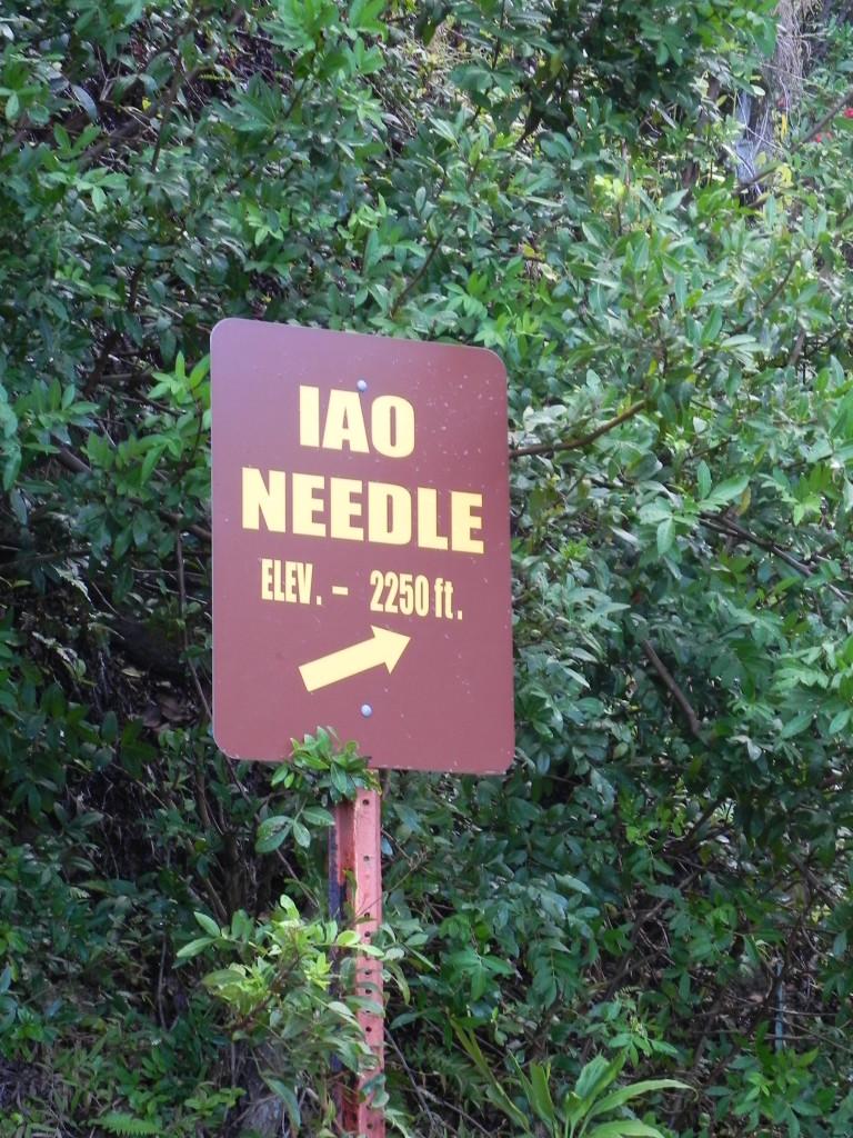 Lo Iao Needle, il percorso