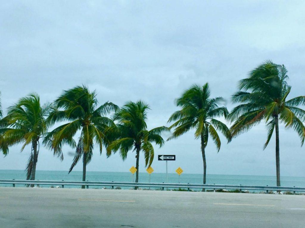 Itinerari di viaggio in Florida, scorci