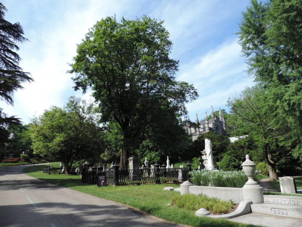 Mount Auburn Cemetery, percorsi