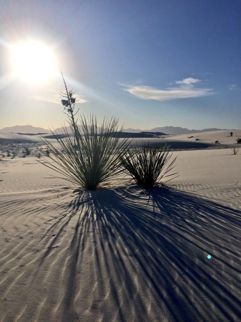 White Sands National Park, tramonto