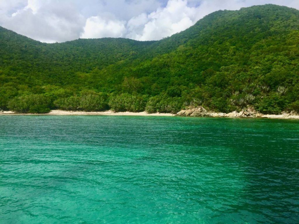 What to see in St. John: Reef Bay