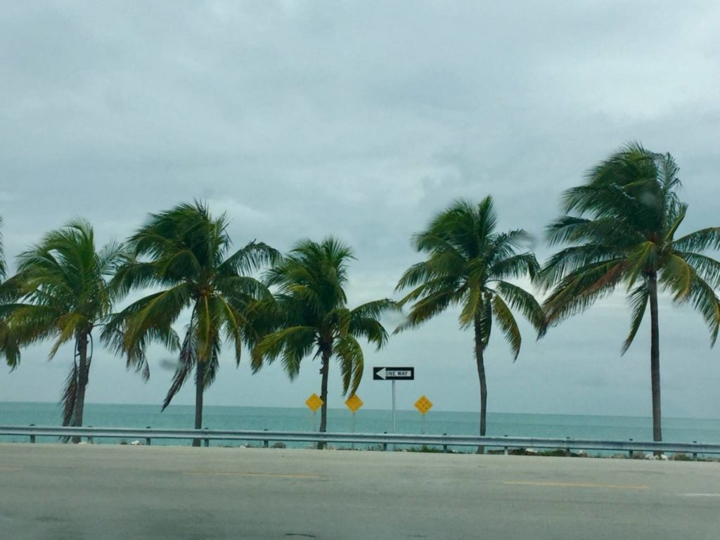 Discover the Florida Keys: views along the Overseas Highway