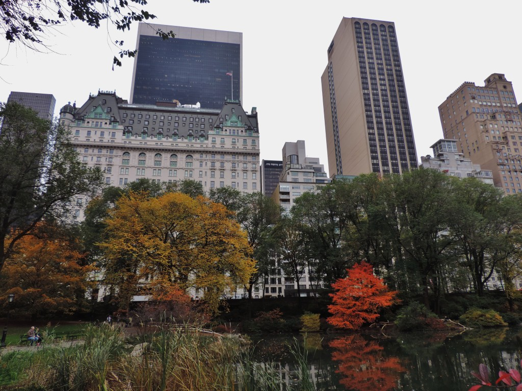 "Central Park, il ""confine"" con Manhattan"