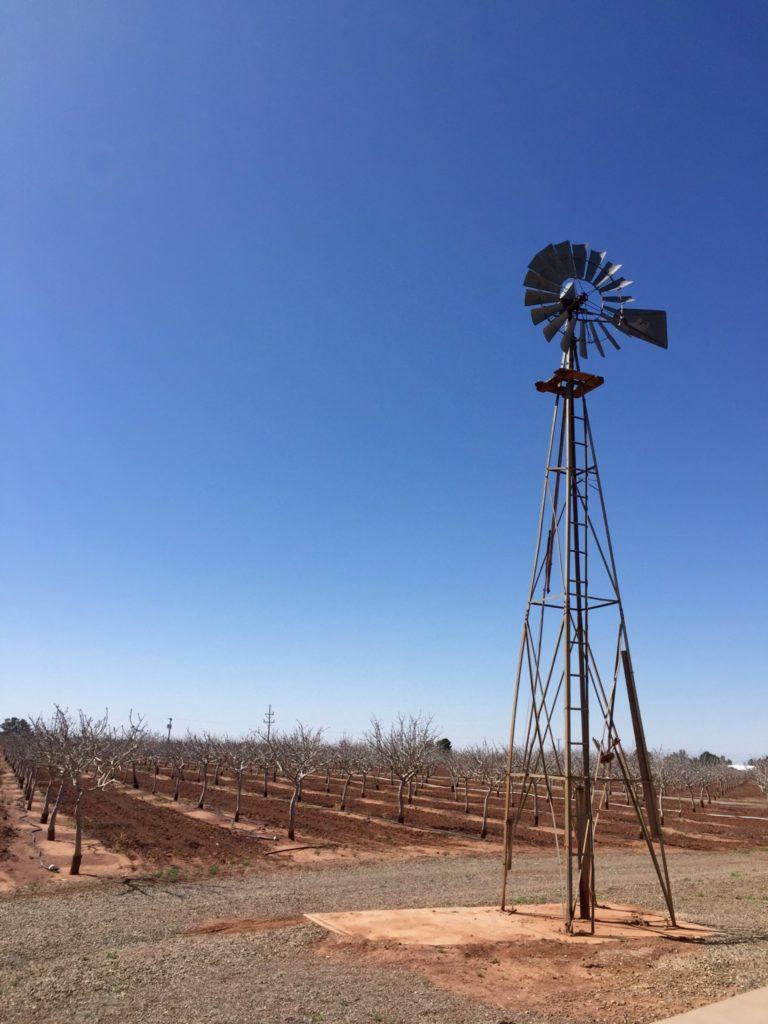 Frammenti di New Mexico