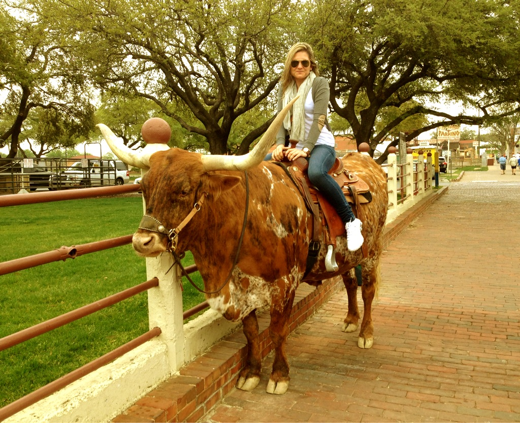 Fort Worth, mounting a cow
