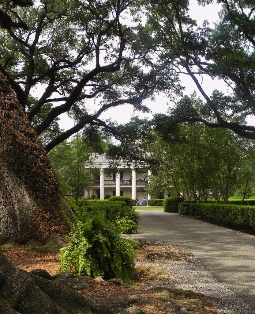 nel vecchio sud... Oak Plantation...