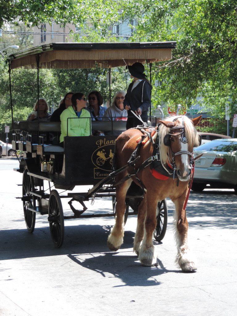 Camminando per le vie di Savannah