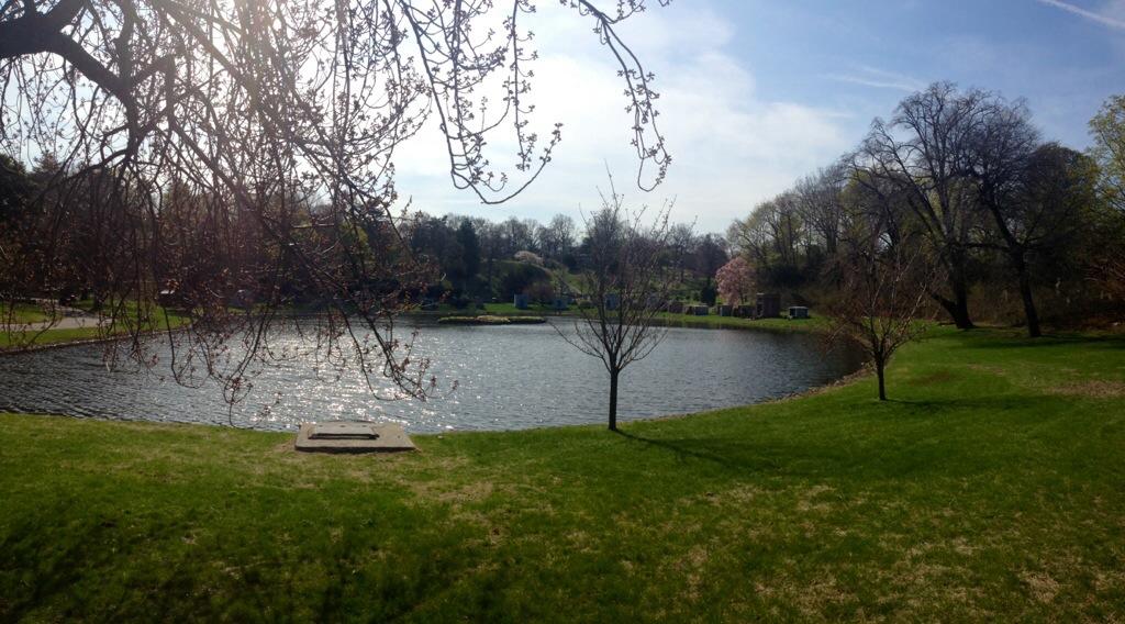 Uno dei laghi del Green Wood Cemetery