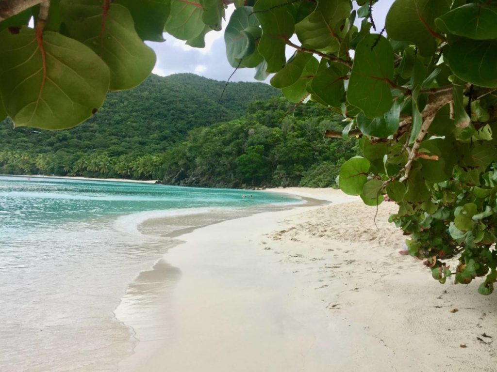 What to see in St. John: Trunk Bay Beach