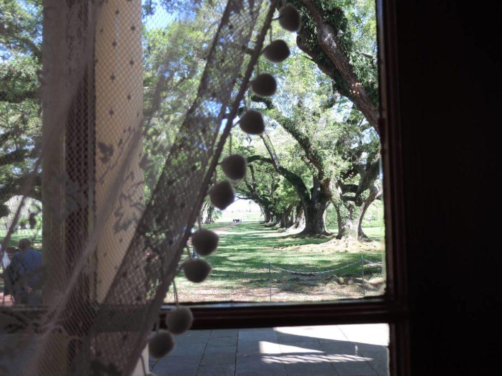 Cosa visitare in Louisiana: scorci sul Mississippi
