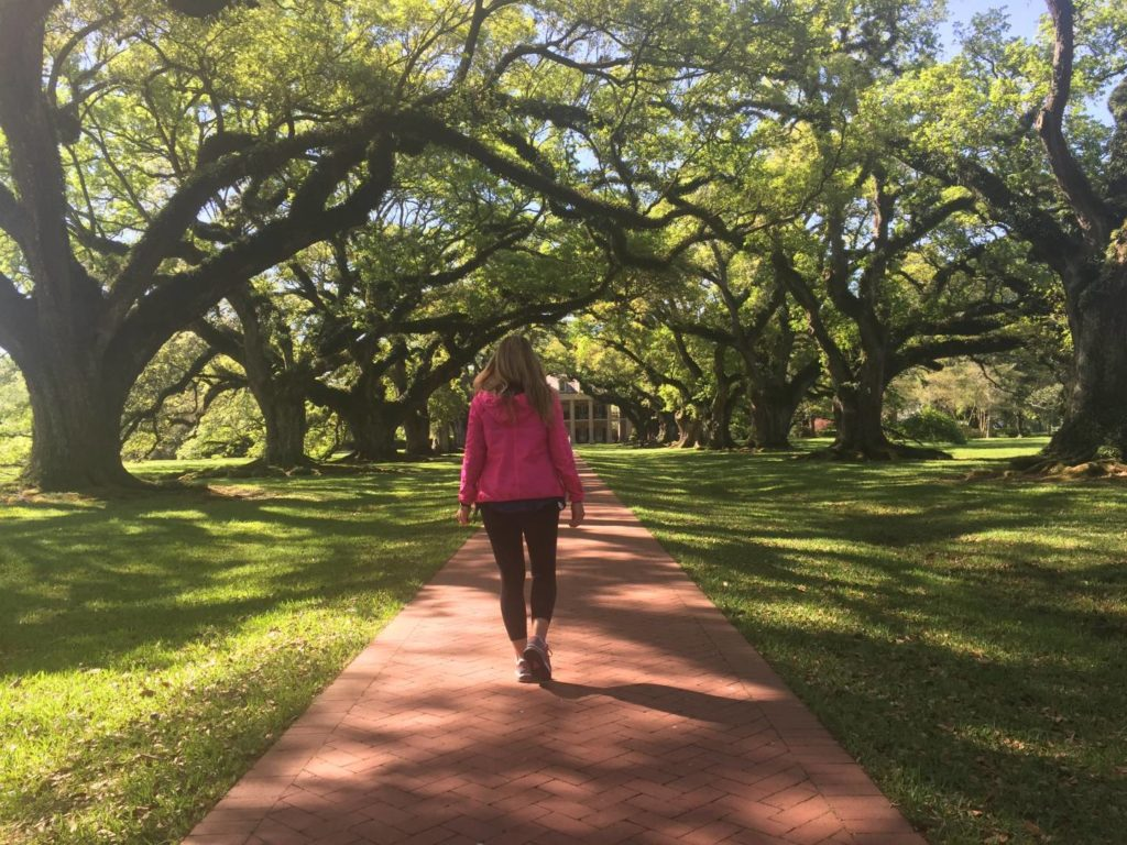 What to see in Louisiana: welcome to Oak Alley Plantation