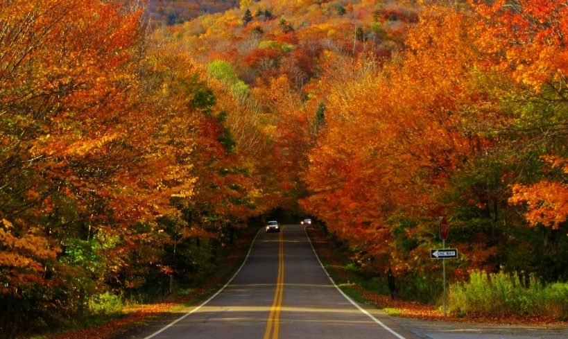 New England on the road. Foliage in Vermont