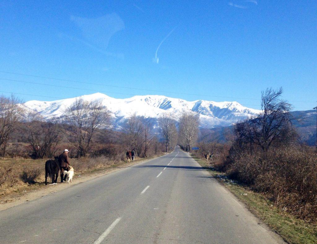 Bulgaria on the road, incontri
