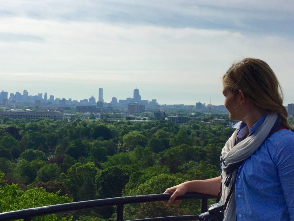 Mount Auburn Cemetery, view of Boston from the Washington Tower