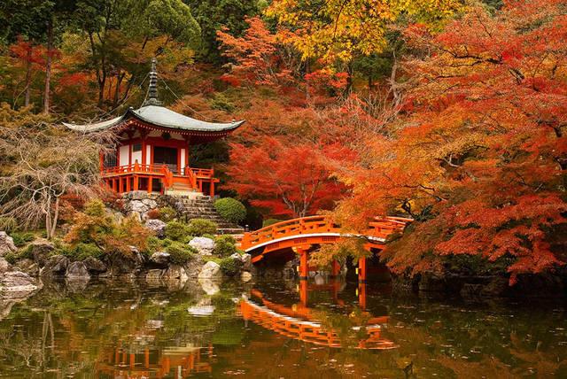 Ottobre in Giappone, Foliage a Kyoto