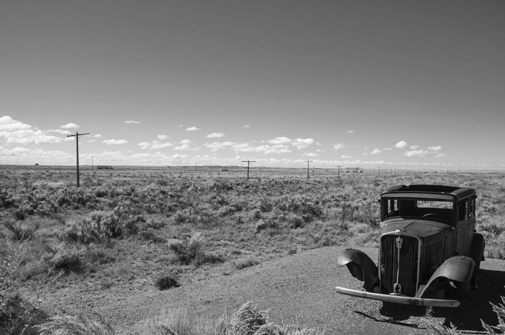 Petrified-forest-(Arizona)