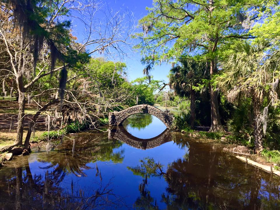 Scoprire New Orleans: le sorprese dei bayou del City Park