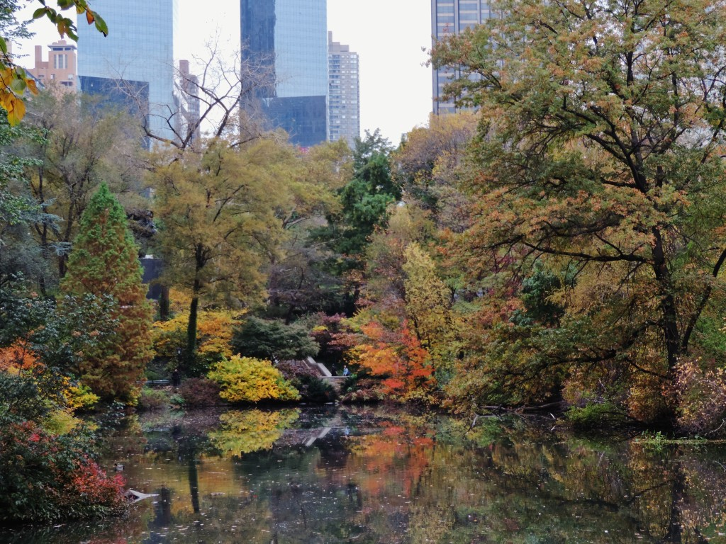 Central Park, New York, scorci.