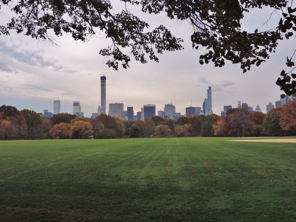 Central Park, the Great Lawn