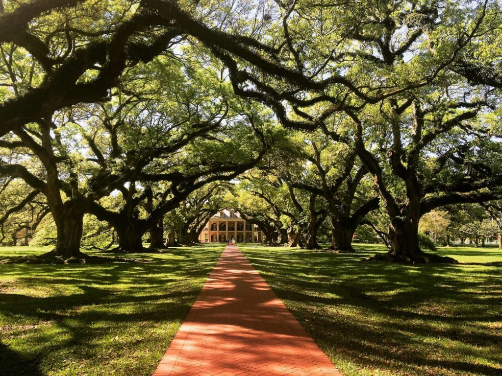 USA on the Road: Oak Alley Plantation