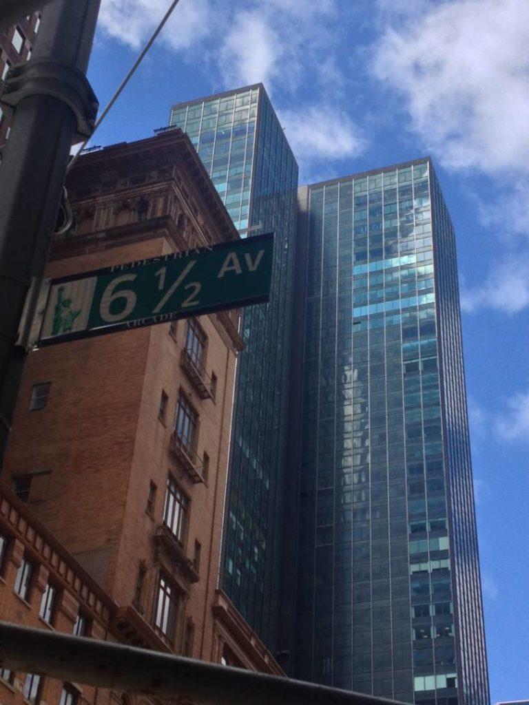 New York Guidebook, views
