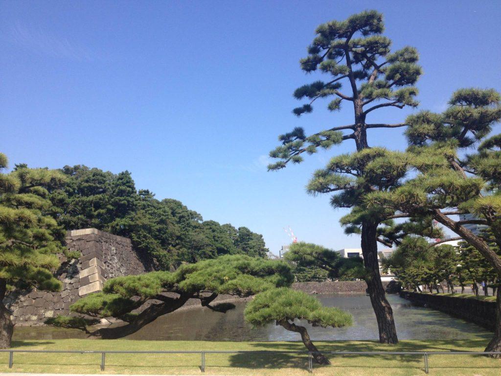 Verso i Giardini Imperiali